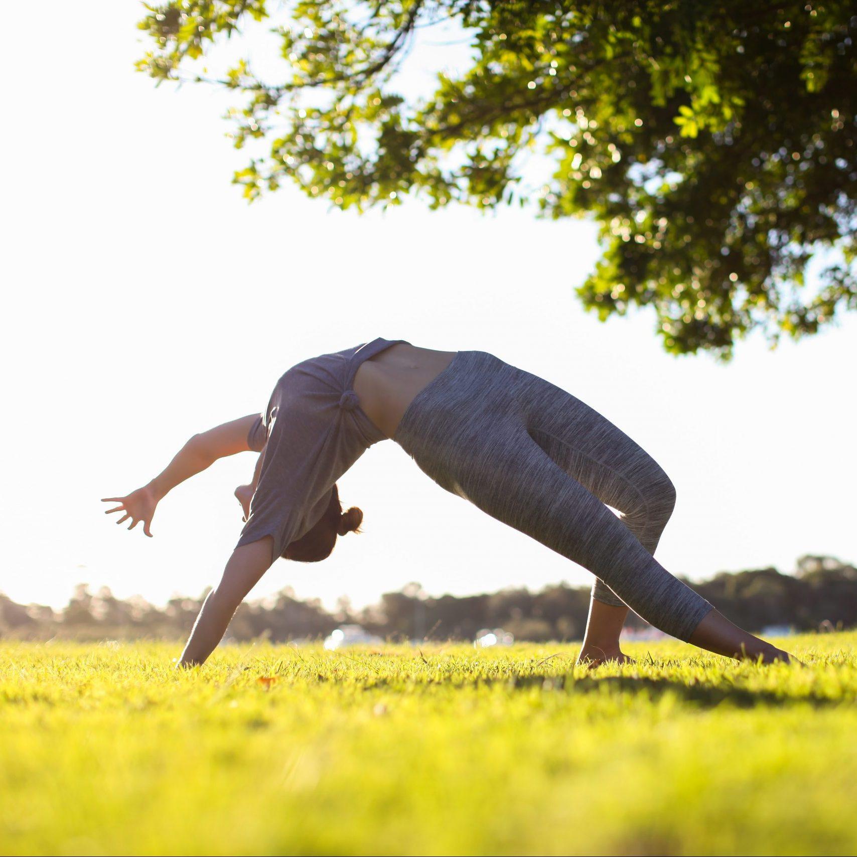 Vinyasa Yoga Leipzig Kurs Online und Präsent